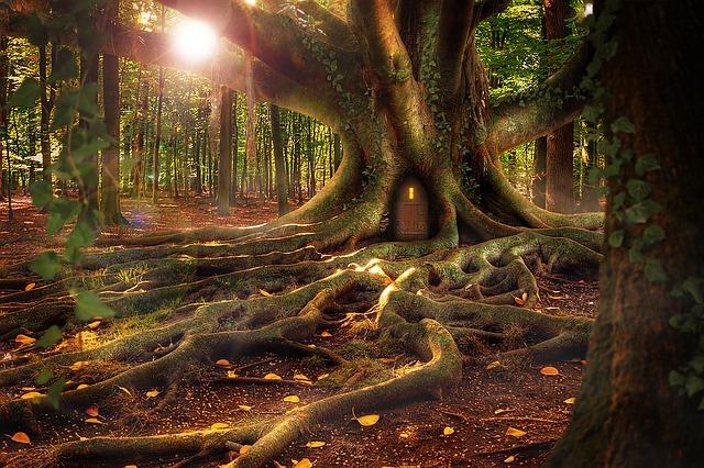Pai Treehouse – Ubytovanie a pamiatka